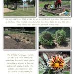 Garden2013 003 (Sheet 3)