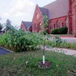 U.P. Episcopal Diocese